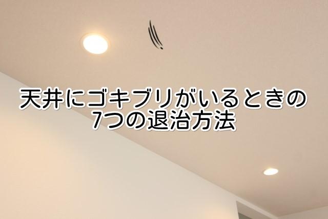 天井にゴキブリがいるときの7つの退治方法