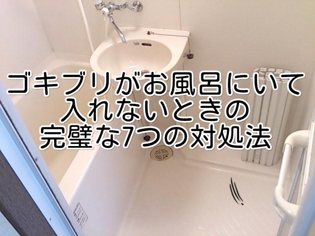 ゴキブリがお風呂にいて 入れないときの 完璧な7つの対処法