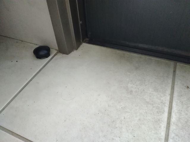 玄関に置いたブラックキャップ