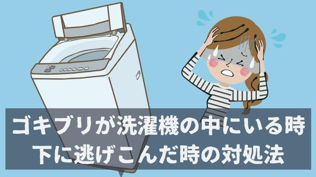 ゴキブリが洗濯機の中にいる時 下に逃げこんだ時の対処法
