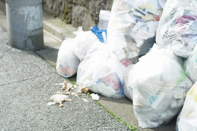 ゴミ捨て場のゴミ袋が破れて散乱