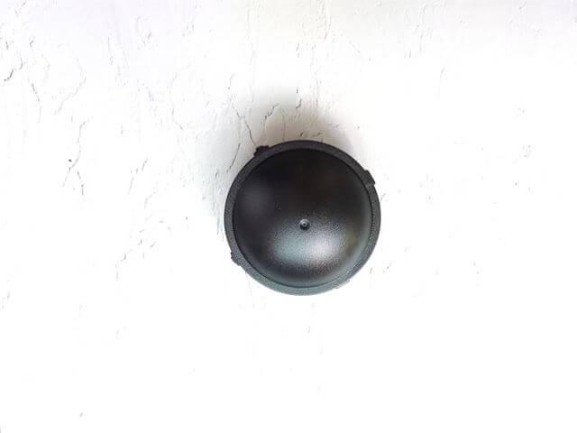 上から見たブラックキャップ