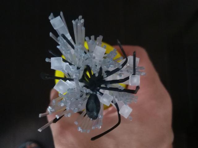 虫虫ゲッターで身動きが取れないクモ